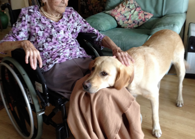 Seniors en situation de fragilité